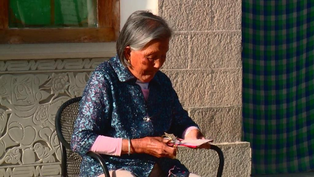 国家级非物质文化遗产《延川剪纸》——代表性传承人高凤莲之综述片