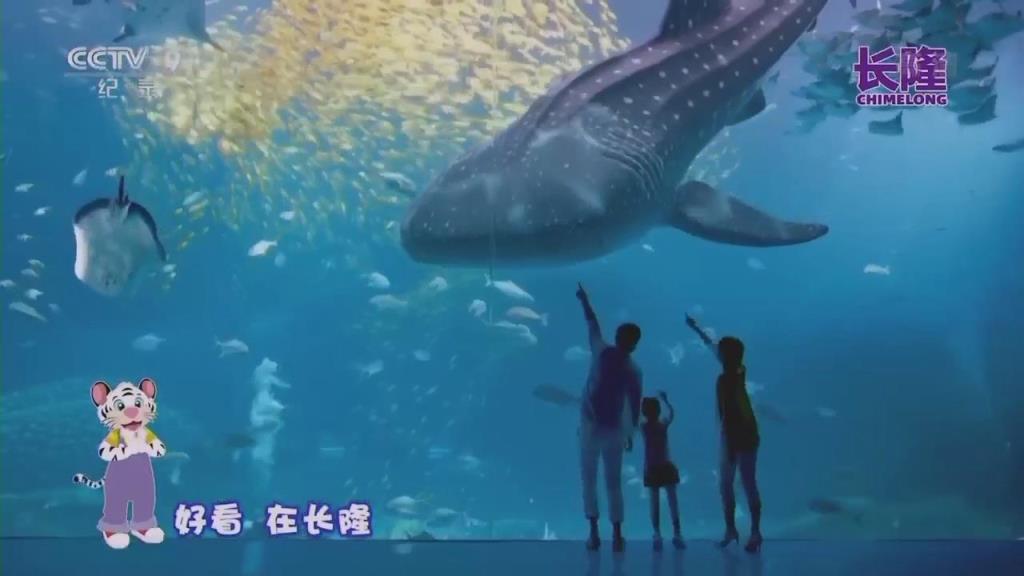 珠海长隆海洋度假区_30S